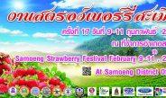 งานเทศกาลสตรอว์เบอร์รี่ และของดีอำเภอสะเมิง ครั้งที่ 17 9 – 11 กุมภาพันธ์ 2561