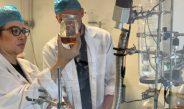 ดร.แก้มหอมรับ รางวัลแพทย์ทางเลือกและแพทย์สมุนไพรดีเด่นของประเทศสหรัฐอเมริกาเป็นปีที่ 4 ผลิตน้ำมันกัญชาเป็นคนไทยเจ้าแรกในสหรัฐอเมริกา