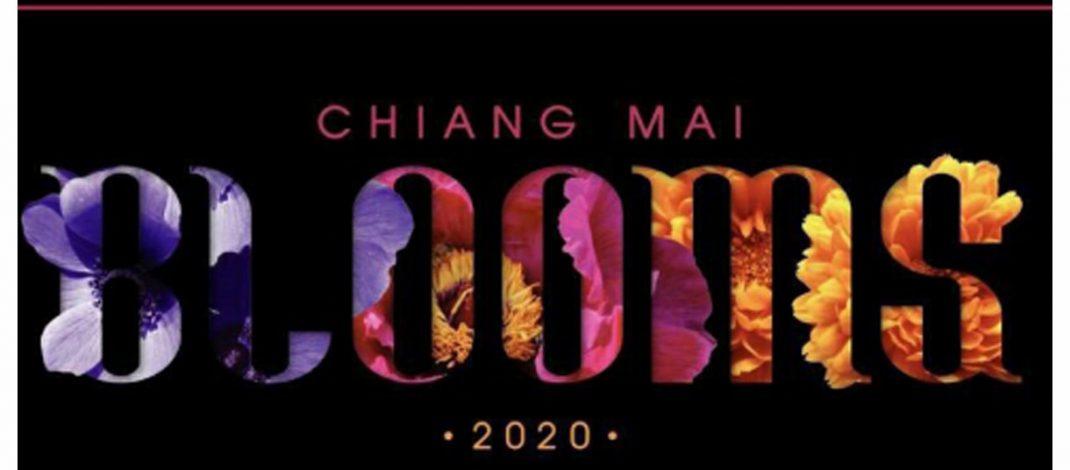 เชียงใหม่ บลูมส์ 2020 กลับมาอีกครั้ง มากินหอม อยู่หอม เบิกบานใจท่องเที่ยวดอกไม้ทั่วเชียงใหม่ตลอดเดือนกุมภาพันธ์นี้